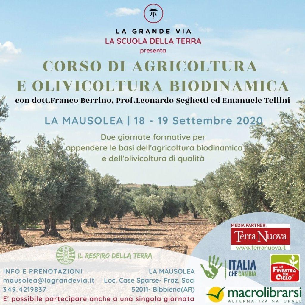 Corso di agricoltura e olivicoltura biodinamica