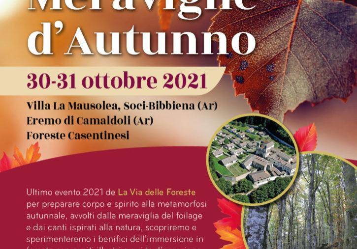 A3 la via delle foreste_foilage autunno 2021 (1)