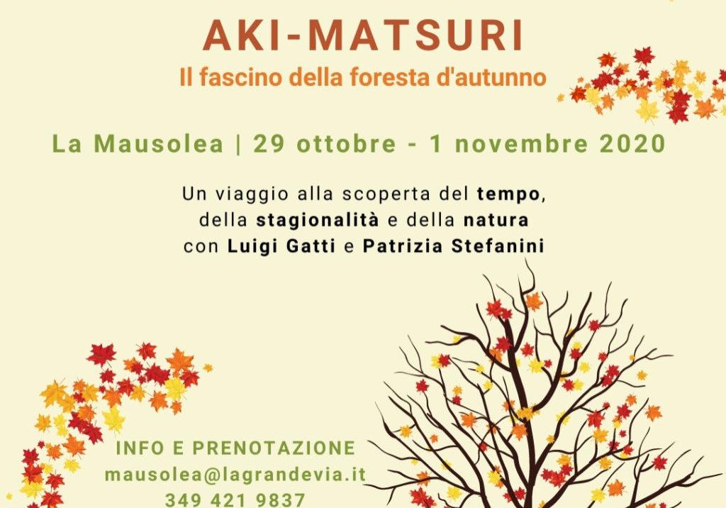 Colori d'autunno_ Aki Matsuri