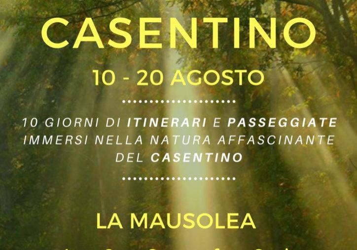 Locandina_Magico Casentino